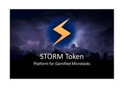 STORMX Logo